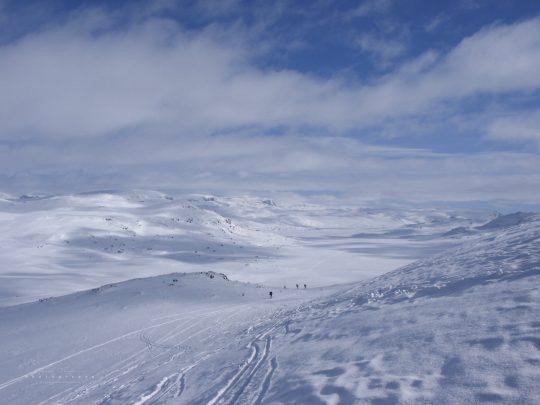 Hardangerjökull